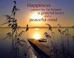 peace of mind 1